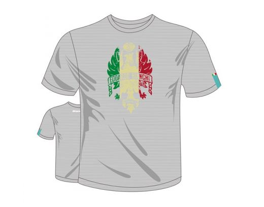 "T-Shirt ""Bianchi Eagle Italian Flag"" grey/melange"